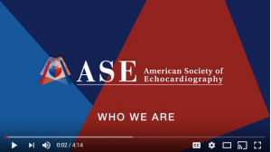 American Society of Echocardiography – Organization of